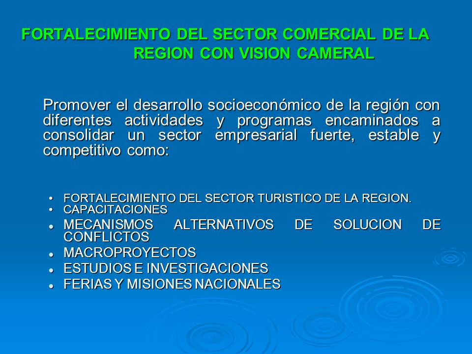 FORTALECIMIENTO DEL SECTOR COMERCIAL DE LA REGION CON VISION CAMERAL