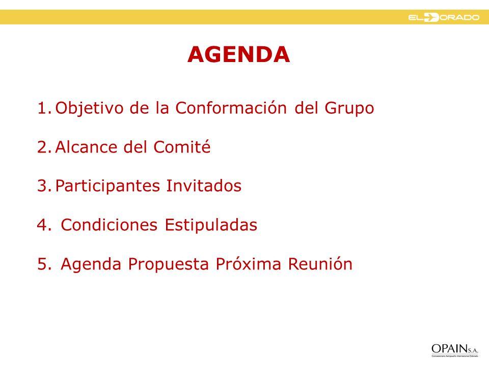 AGENDA Objetivo de la Conformación del Grupo Alcance del Comité