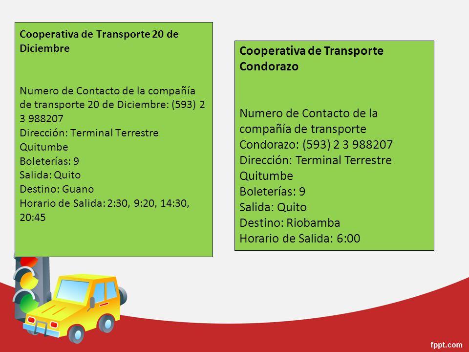 Cooperativa de Transporte Condorazo