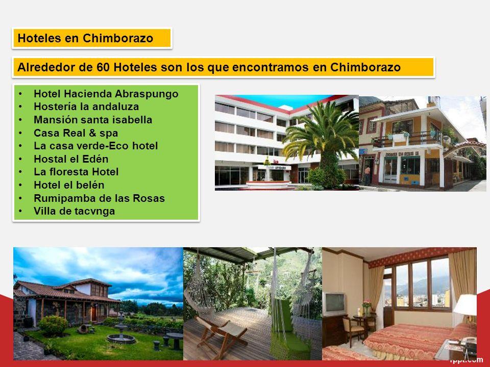 Alrededor de 60 Hoteles son los que encontramos en Chimborazo