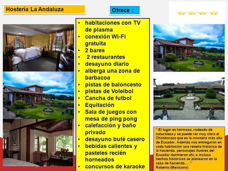 habitaciones con TV de plasma conexión Wi-Fi gratuita 2 bares
