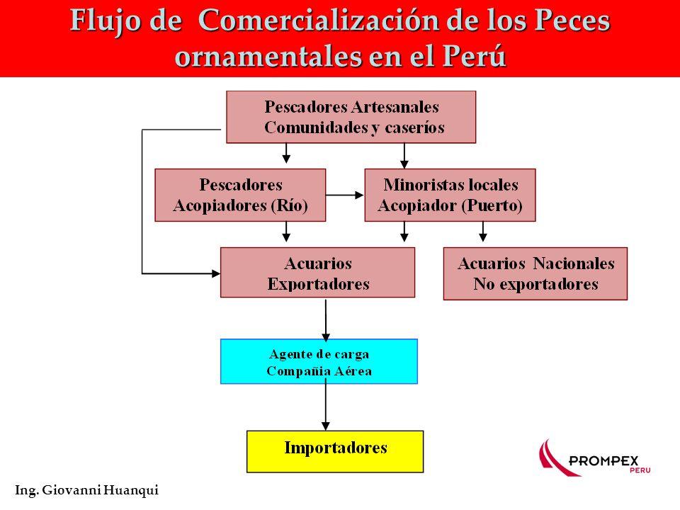Flujo de Comercialización de los Peces ornamentales en el Perú