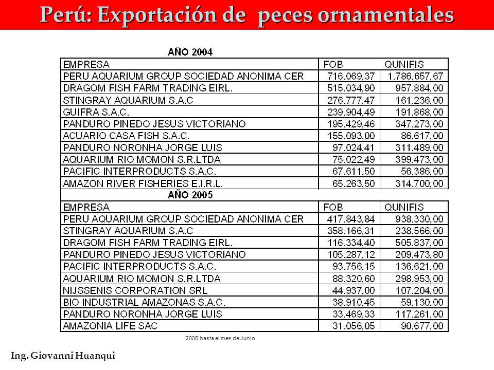 Perú: Exportación de peces ornamentales