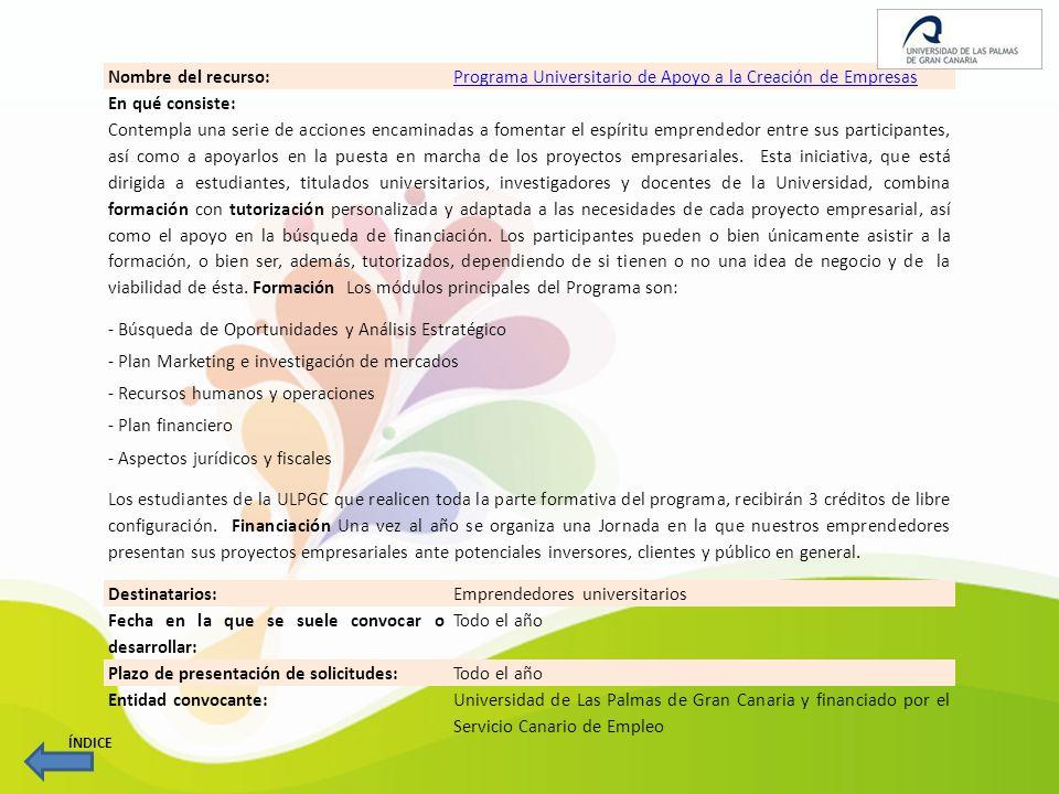 Programa Universitario de Apoyo a la Creación de Empresas