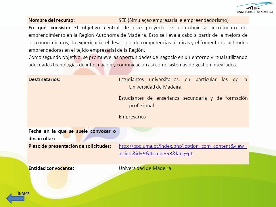 SEE (Simulaçao empresarial e empreendedorismo)