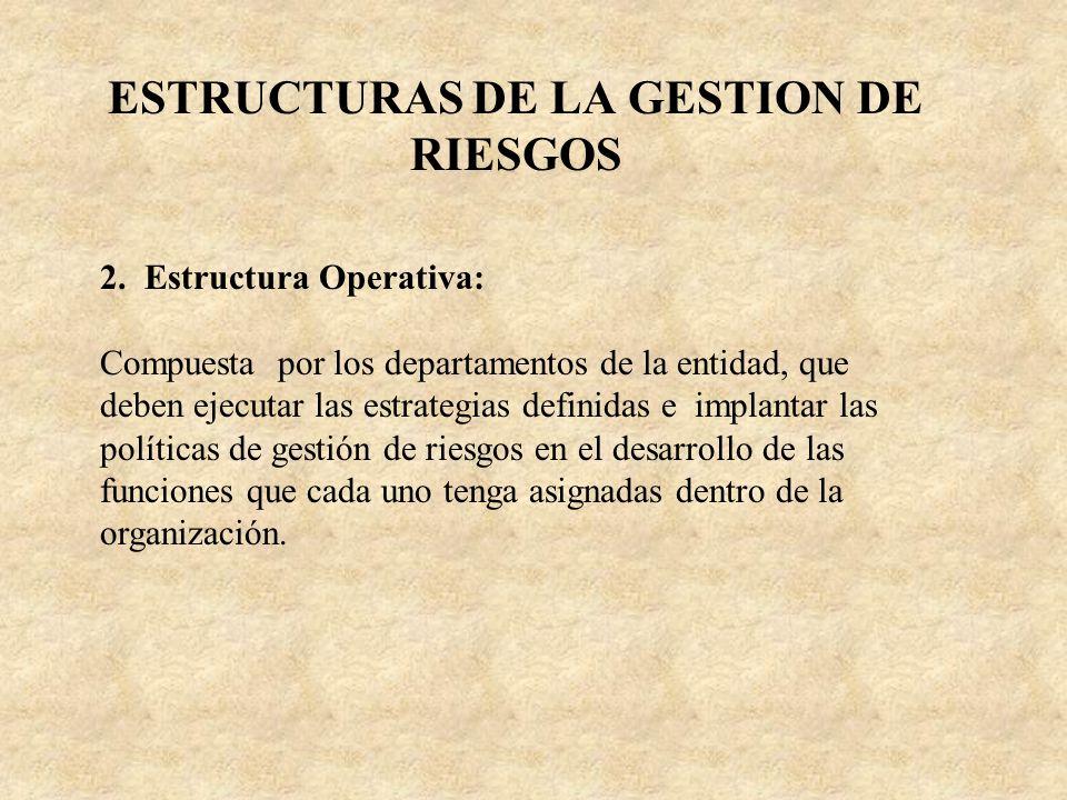 ESTRUCTURAS DE LA GESTION DE RIESGOS