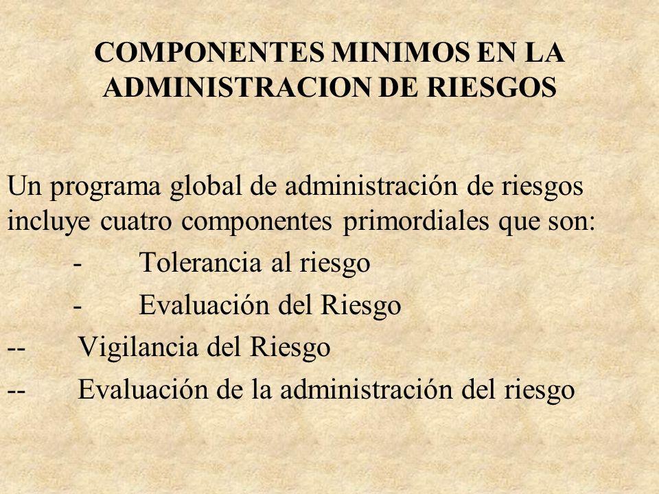 COMPONENTES MINIMOS EN LA ADMINISTRACION DE RIESGOS