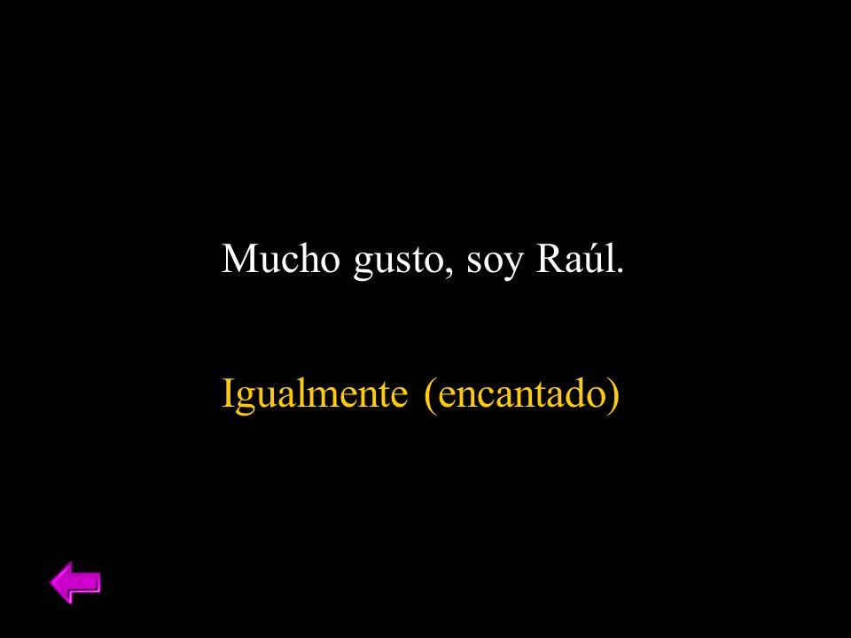 Mucho gusto, soy Raúl. Igualmente (encantado)