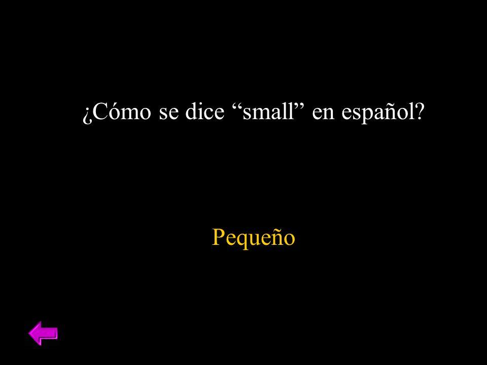¿Cómo se dice small en español