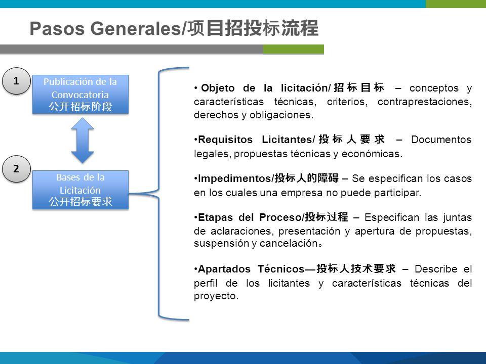 Pasos Generales/项目招投标流程