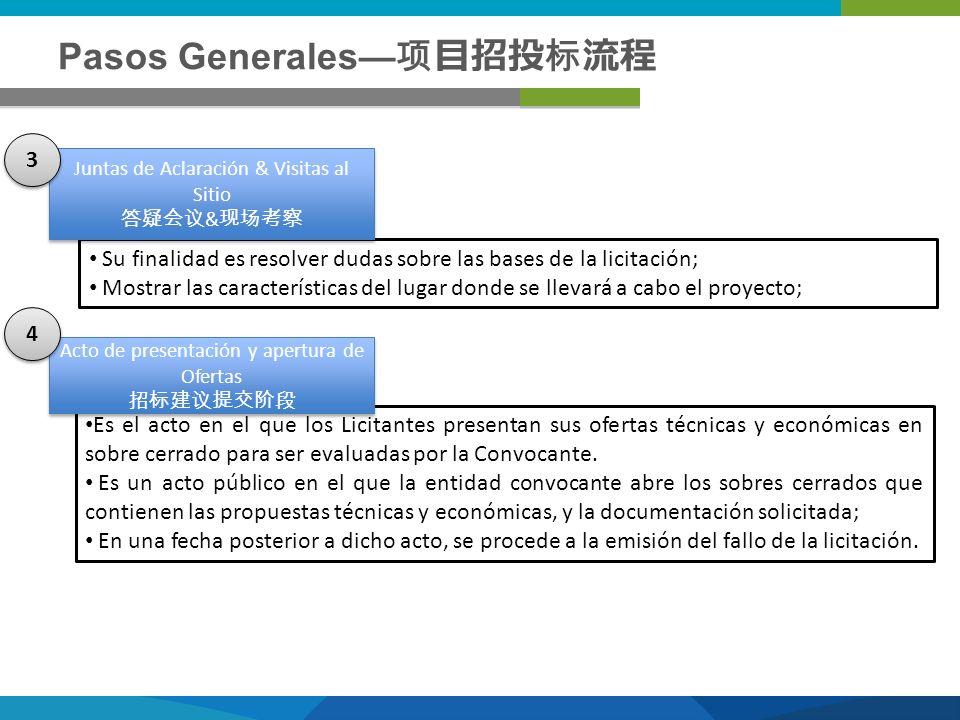 Pasos Generales—项目招投标流程