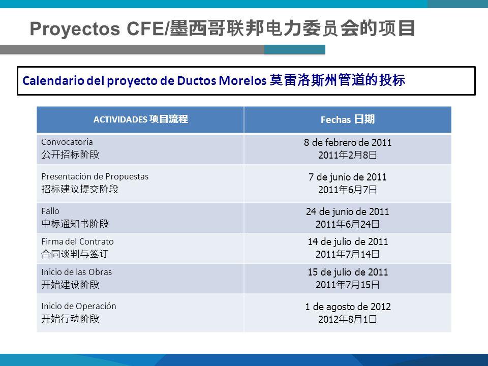 Proyectos CFE/墨西哥联邦电力委员会的项目