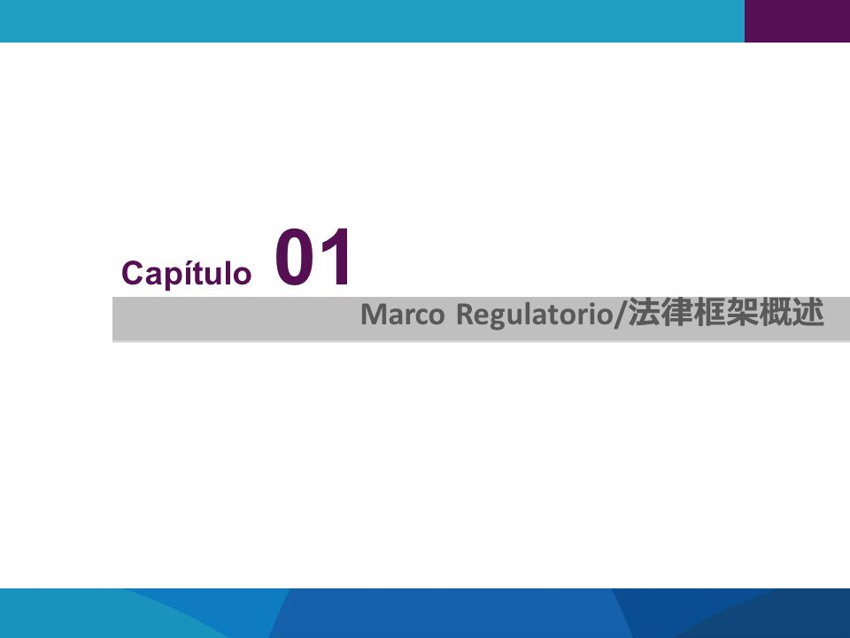 Capítulo 01 Marco Regulatorio/法律框架概述