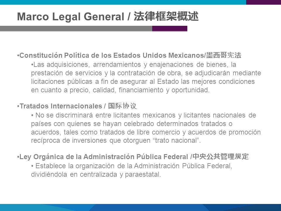 Marco Legal General / 法律框架概述