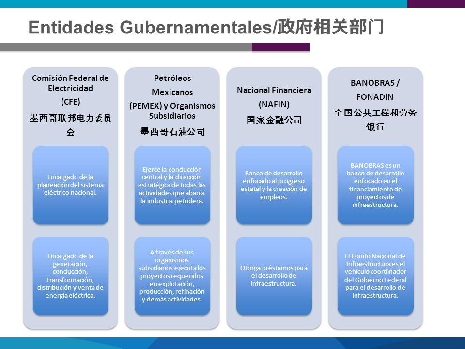 Entidades Gubernamentales/政府相关部门