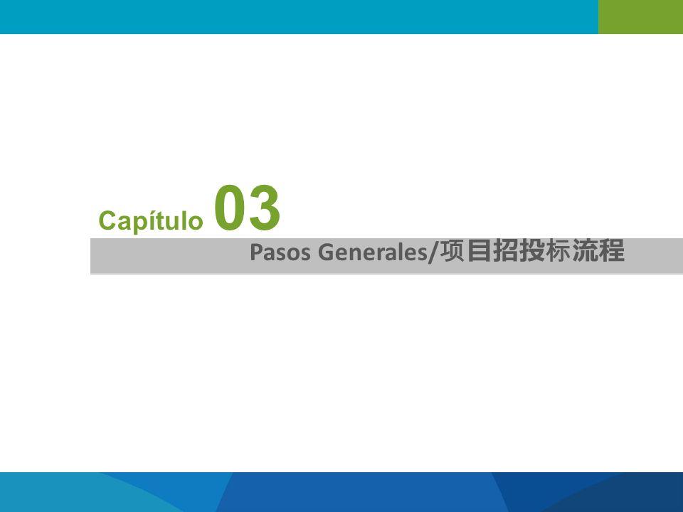 Capítulo 03 Pasos Generales/项目招投标流程