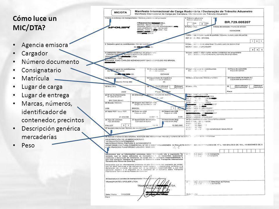 Cómo luce un MIC/DTA Agencia emisora Cargador Número documento