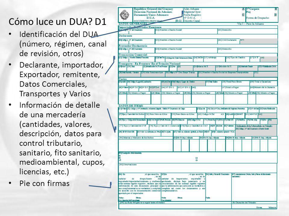 Cómo luce un DUA D1 Identificación del DUA (número, régimen, canal de revisión, otros)