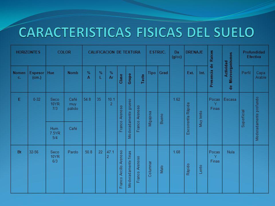 CARACTERISTICAS FISICAS DEL SUELO