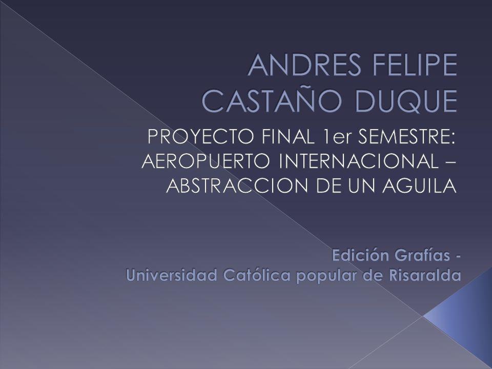 ANDRES FELIPE CASTAÑO DUQUE