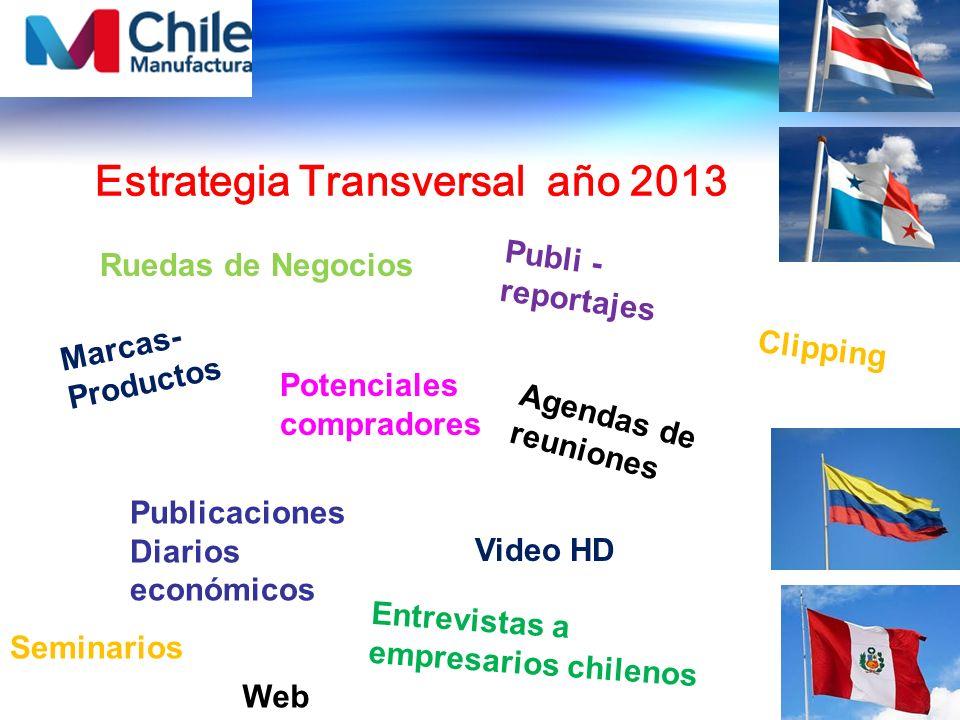 Estrategia Transversal año 2013
