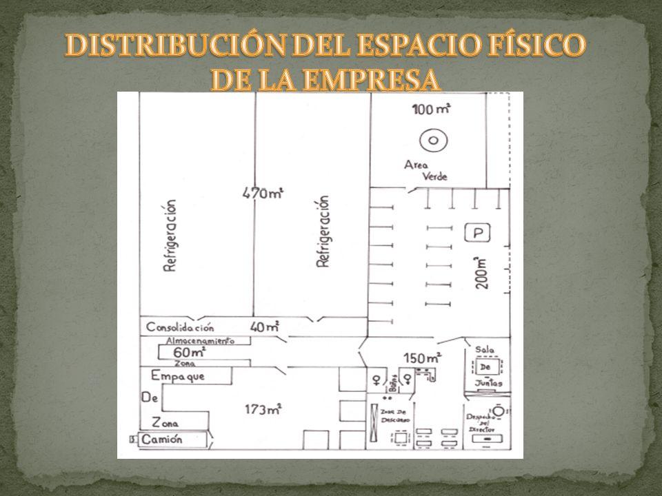 DISTRIBUCIÓN DEL ESPACIO FÍSICO DE LA EMPRESA