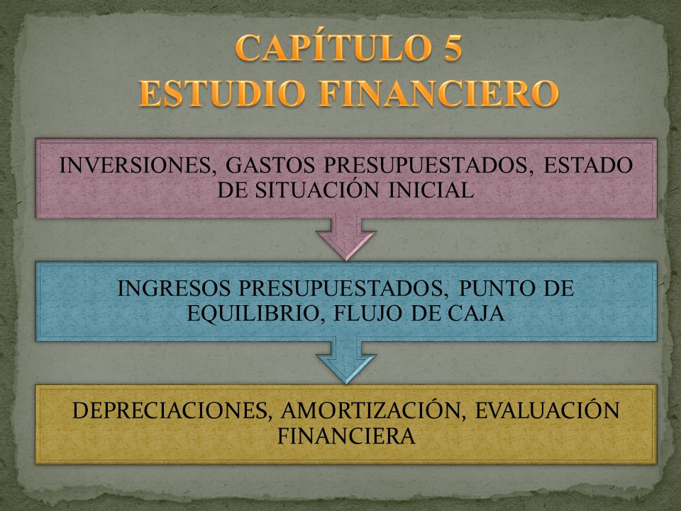 CAPÍTULO 5 ESTUDIO FINANCIERO