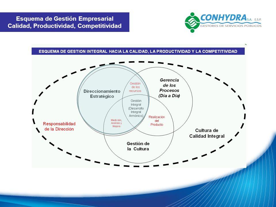 Esquema de Gestión Empresarial Calidad, Productividad, Competitividad
