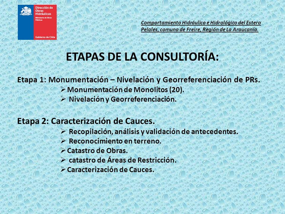 ETAPAS DE LA CONSULTORÍA: