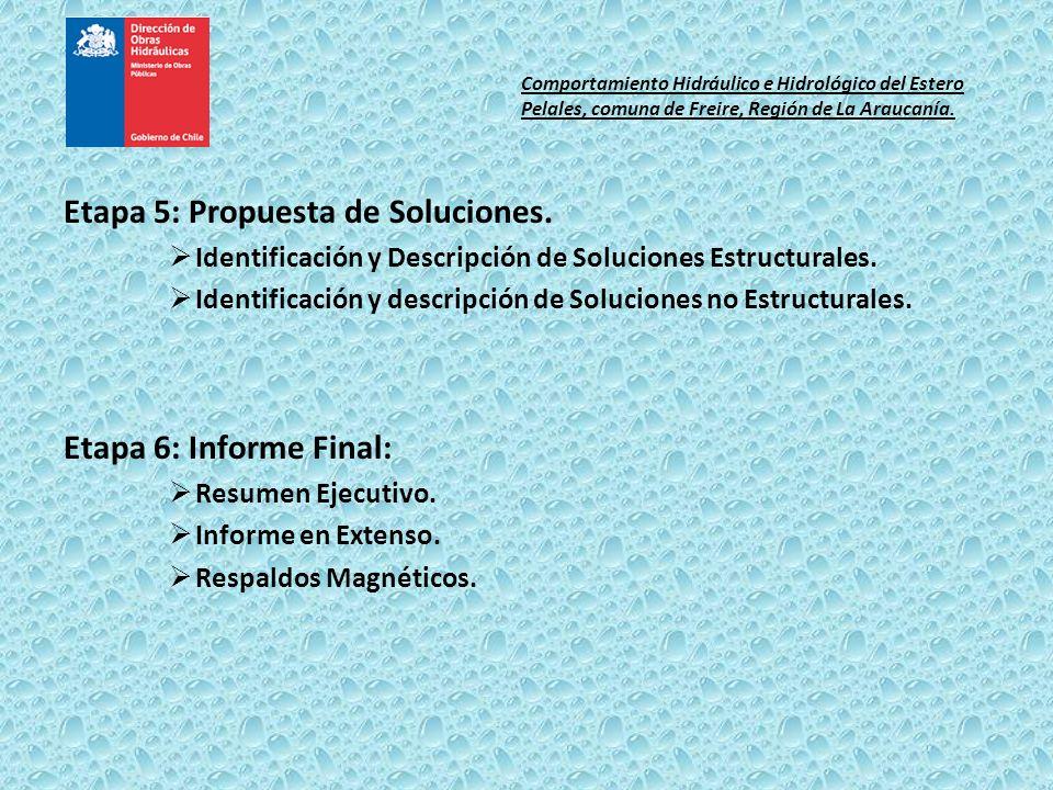 Etapa 5: Propuesta de Soluciones.