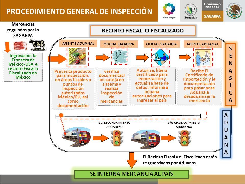 PROCEDIMIENTO GENERAL DE INSPECCIÓN