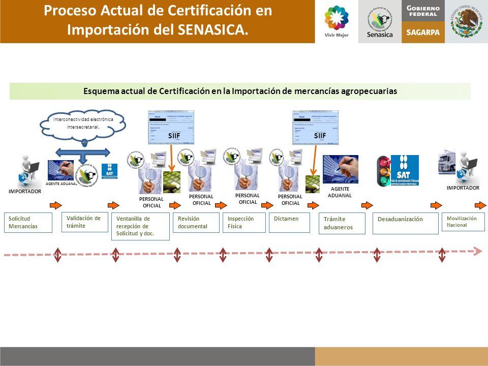 Proceso Actual de Certificación en Importación del SENASICA.