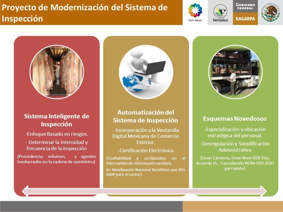 Proyecto de Modernización del Sistema de Inspección