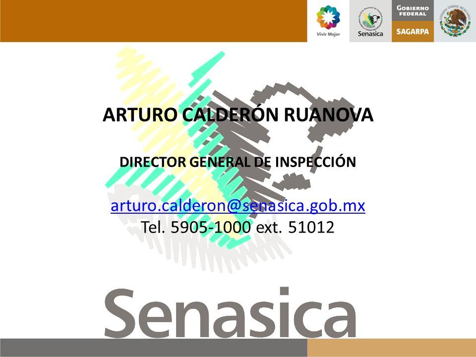 ARTURO CALDERÓN RUANOVA DIRECTOR GENERAL DE INSPECCIÓN