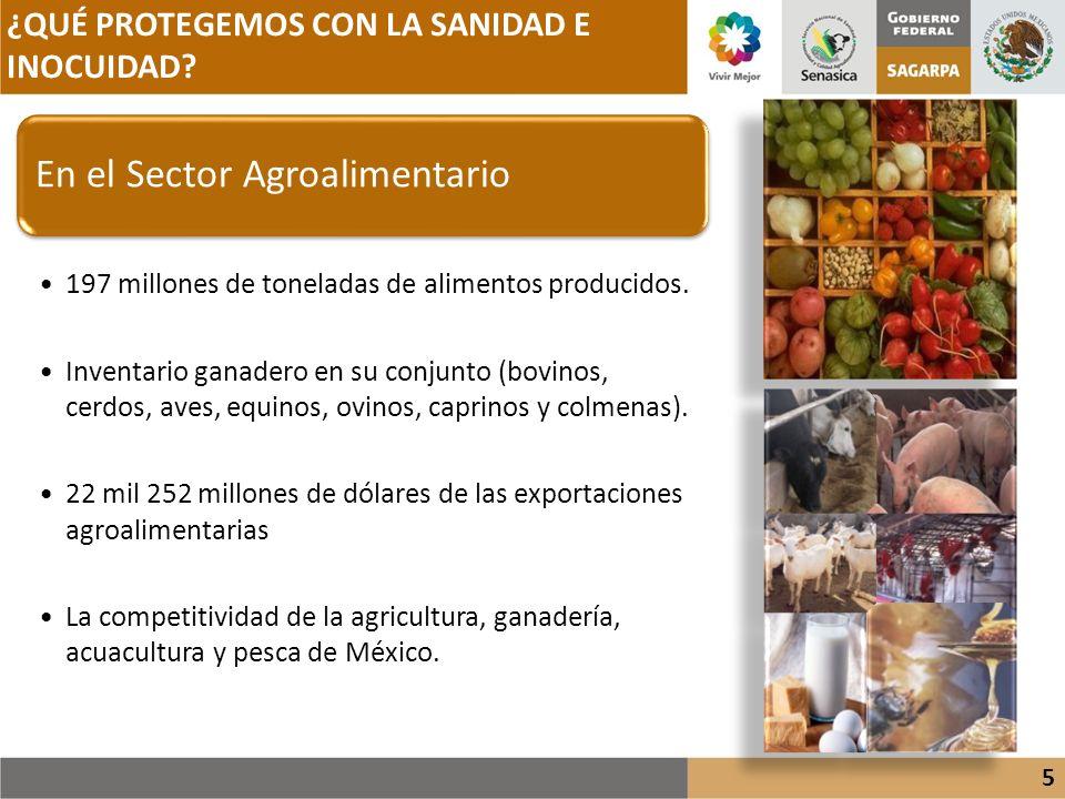 En el Sector Agroalimentario