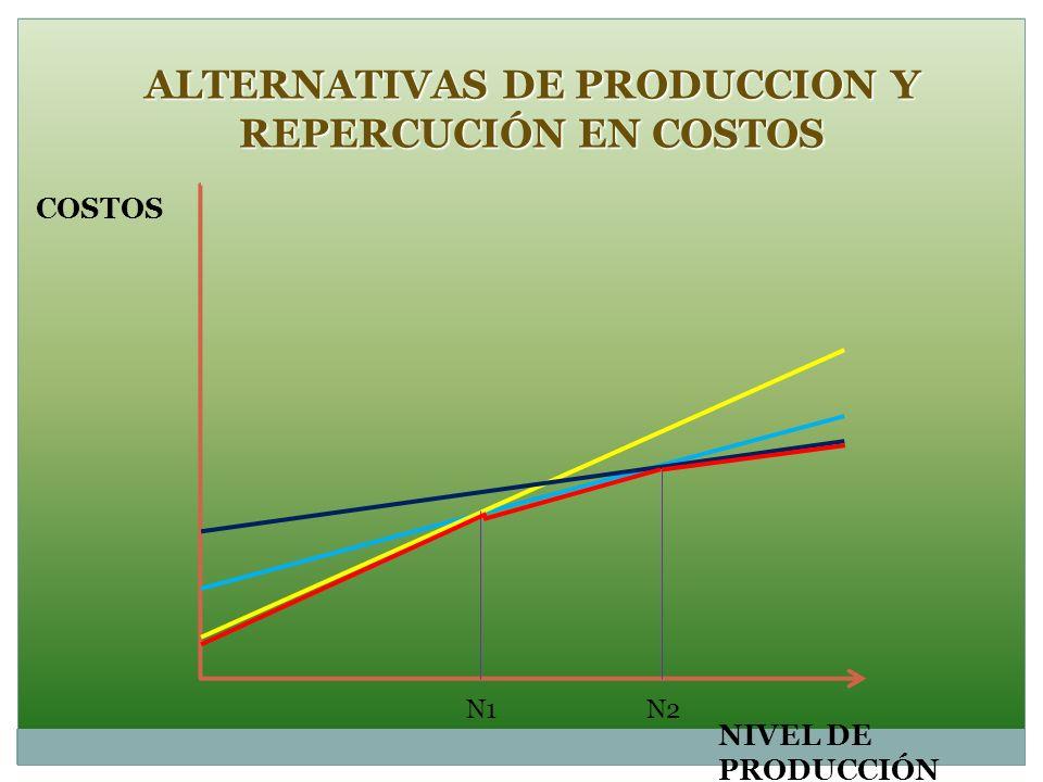 ALTERNATIVAS DE PRODUCCION Y REPERCUCIÓN EN COSTOS