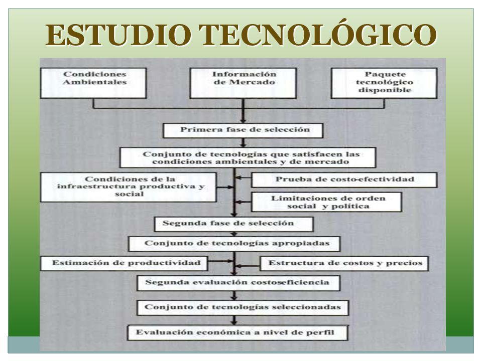 ESTUDIO TECNOLÓGICO