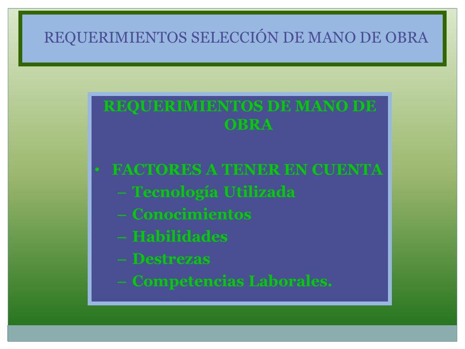 REQUERIMIENTOS DE MANO DE OBRA