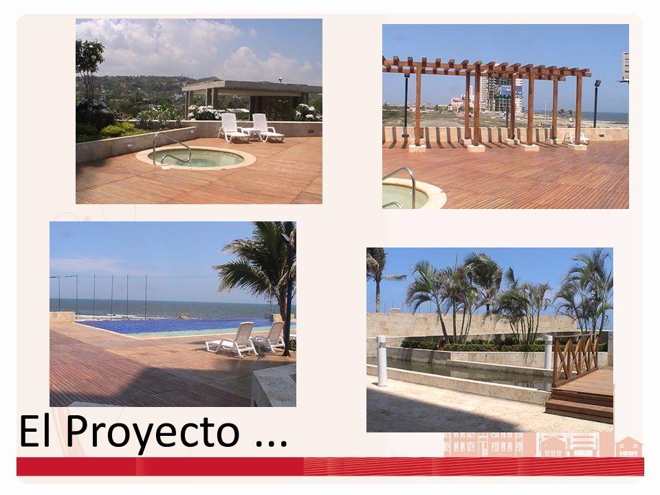 El Proyecto ...