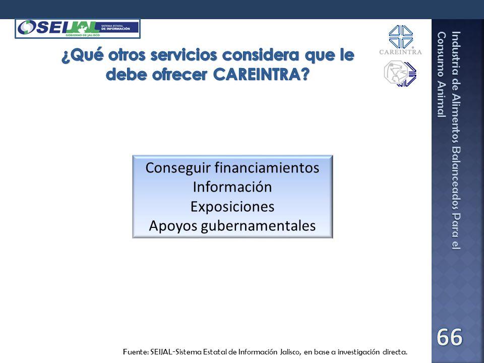 ¿Qué otros servicios considera que le debe ofrecer CAREINTRA