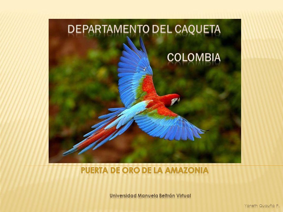 DEPARTAMENTO DEL CAQUETA Puerta de Oro de la amazonia