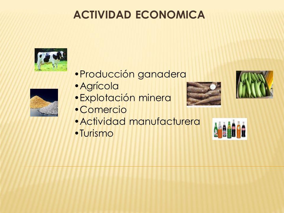 ACTIVIDAD ECONOMICA Producción ganadera Agrícola Explotación minera