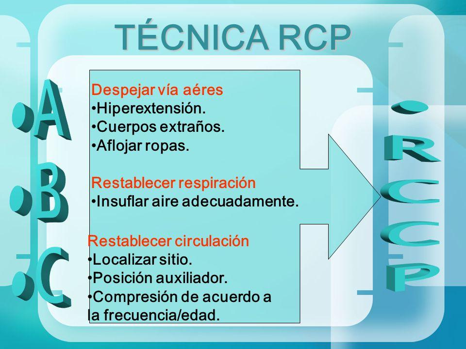 TÉCNICA RCP A RCCP B C Despejar vía aéres Hiperextensión.