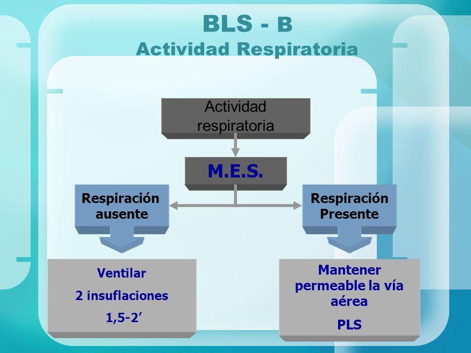 BLS - B Actividad Respiratoria