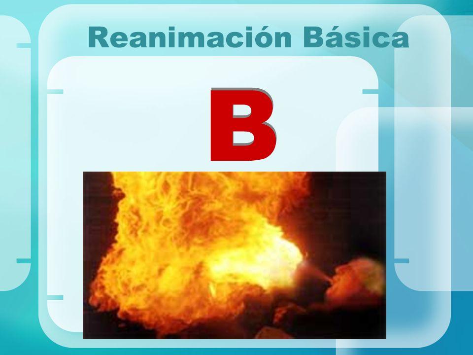 Reanimación Básica B
