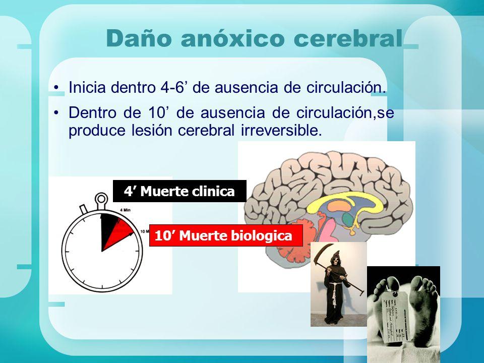 Daño anóxico cerebral Inicia dentro 4-6' de ausencia de circulación.
