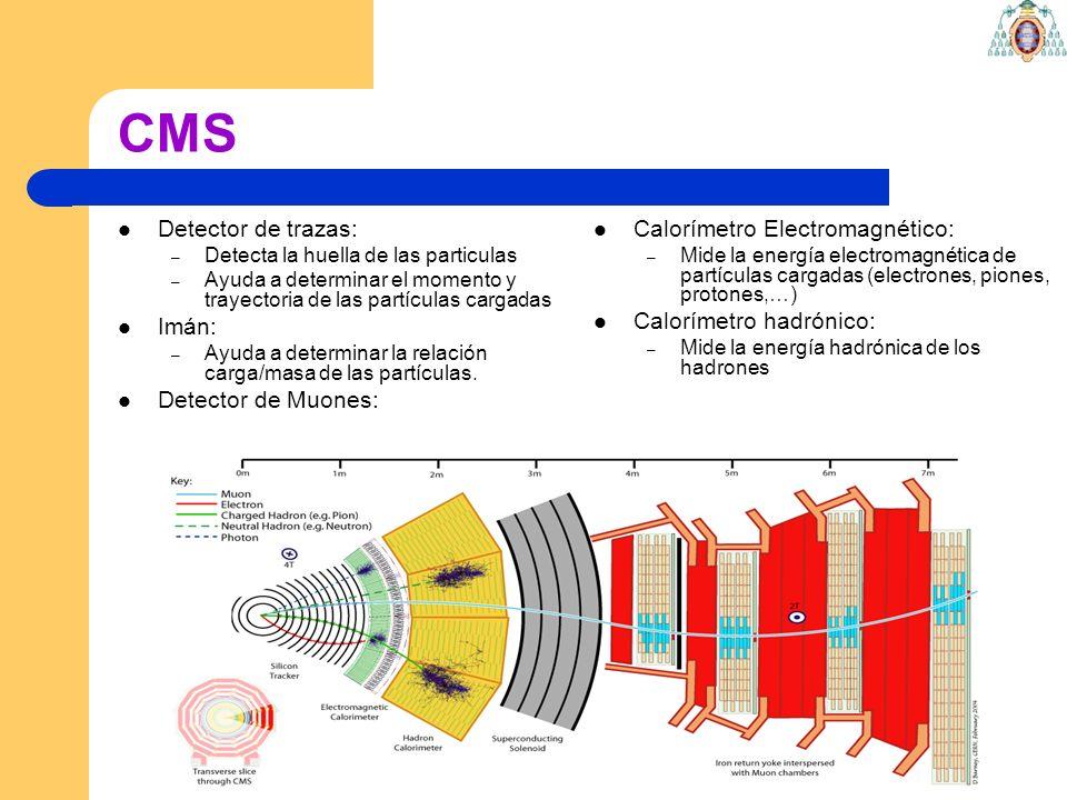 CMS Detector de trazas: Imán: Detector de Muones: