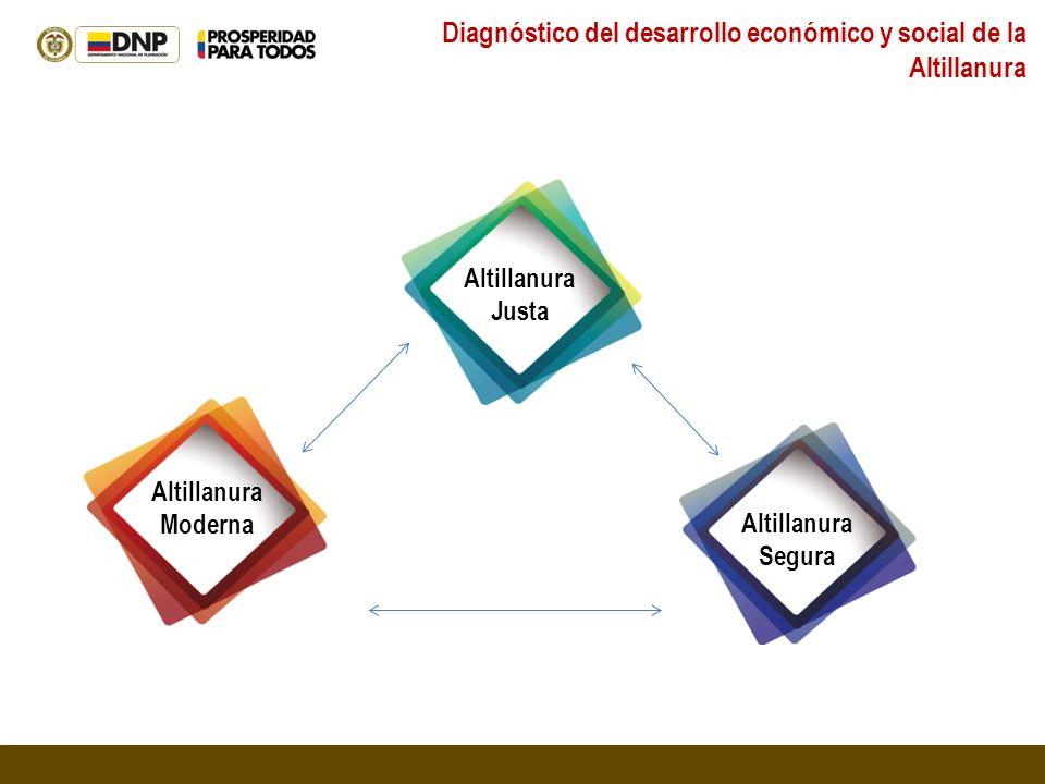 Diagnóstico del desarrollo económico y social de la Altillanura