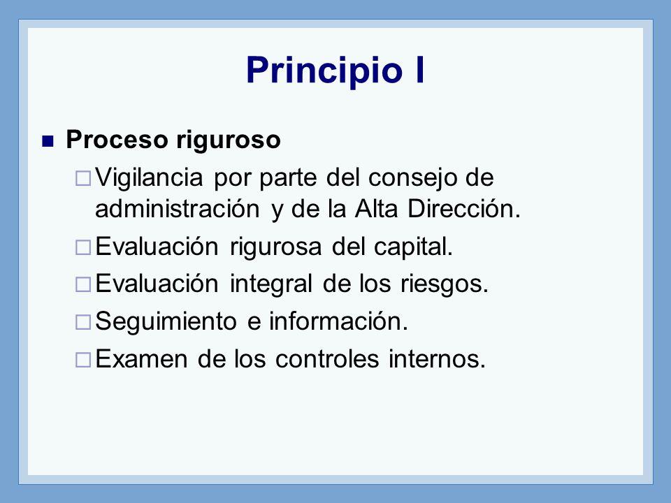Principio I Proceso riguroso