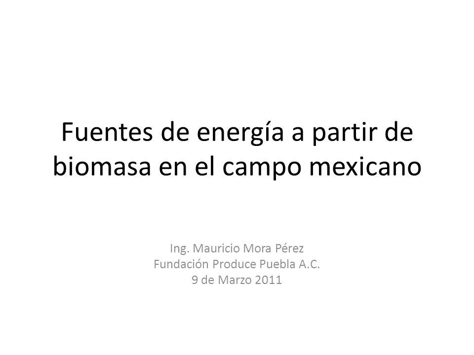 Fuentes de energía a partir de biomasa en el campo mexicano